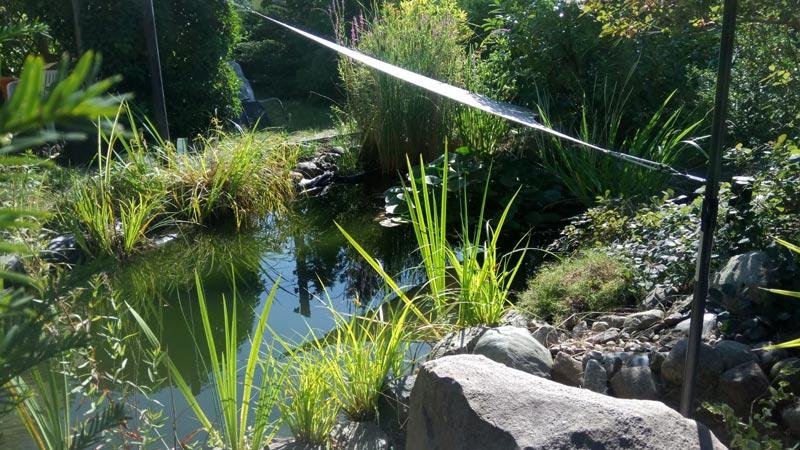 Johann Schindler Garten und Landschaftbau Gartenbau Gartenpflege Teich